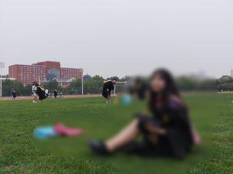 东北大学研究生院秦皇岛分院体育场