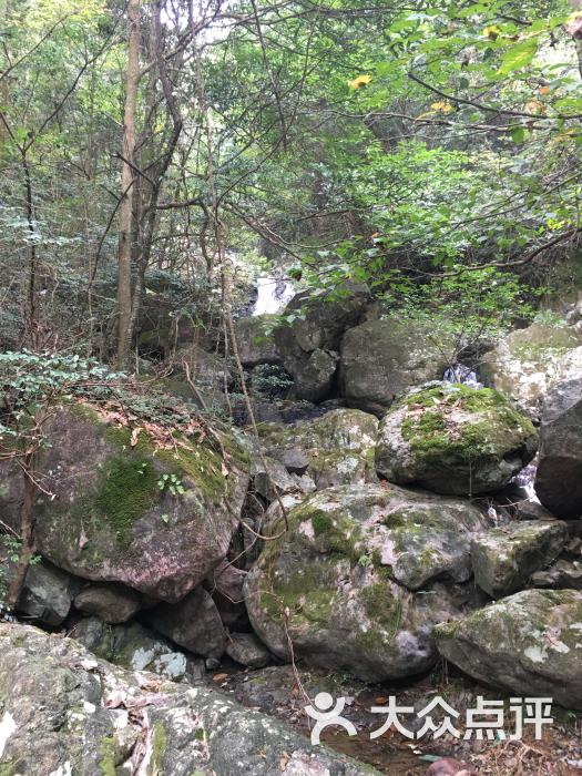 野鹤湫风景区图片 - 第20张