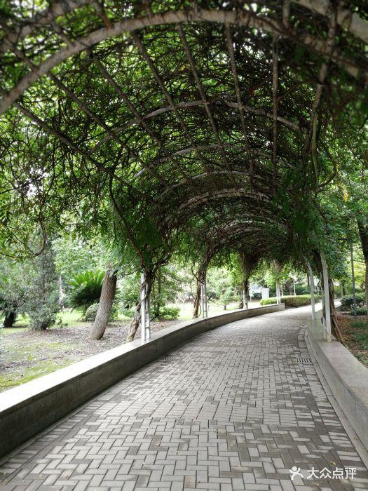 东洲公园-图片-海门市周边游-大众点评网