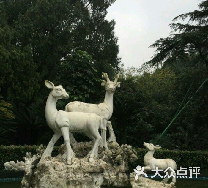 中山公园游乐园-图片-温州周边游-大众点评网