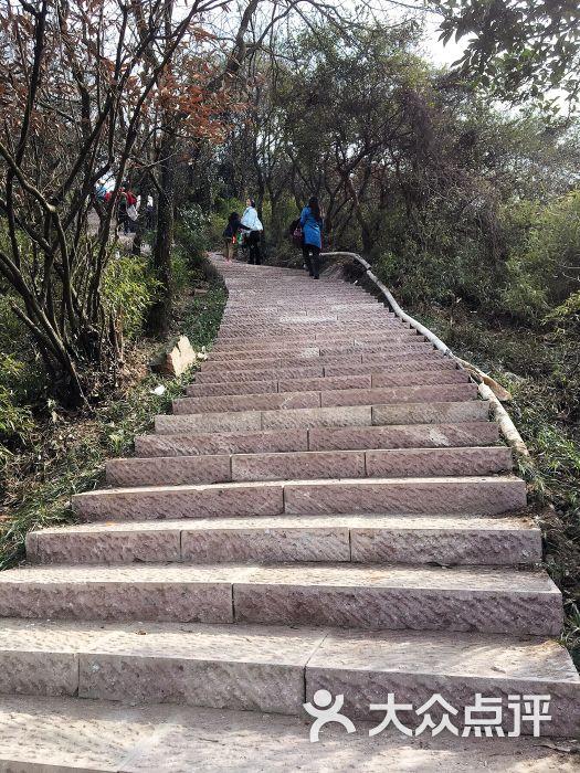 杭州半山国家森林公园图片 - 第3张