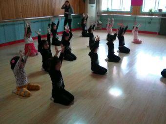 小白鸽专业舞蹈学校(振兴路分校)