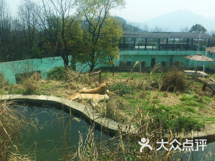 温州动物园图片 - 第11张