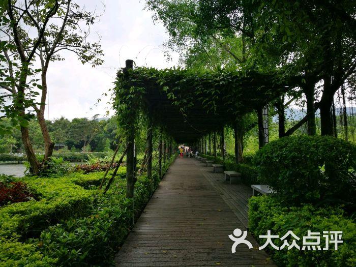 大屏嶂森林公园图片 - 第12张
