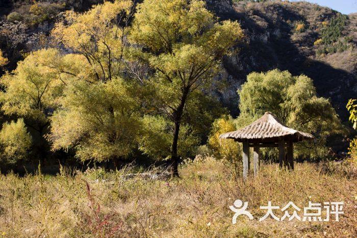 云阳仙境自然风景区图片 - 第19张