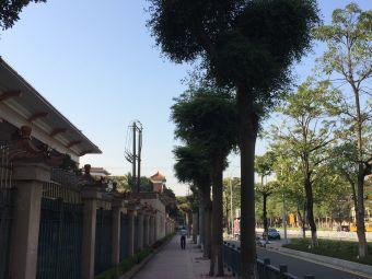 顺德桂洲中学