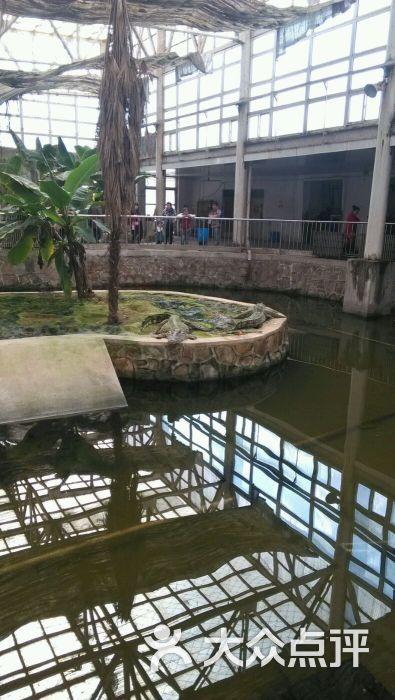 天津动物园的全部评价(第4页)-天津-大众点评网