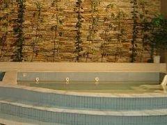 洗浴-浅草温泉浴场