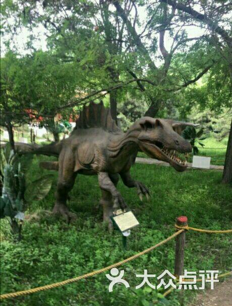 太原ag游戏直营网|平台园恐龙世界图片 - 第20张