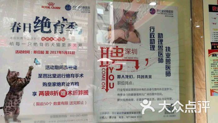 芭比堂动物医院(深圳新洲分院)的点评