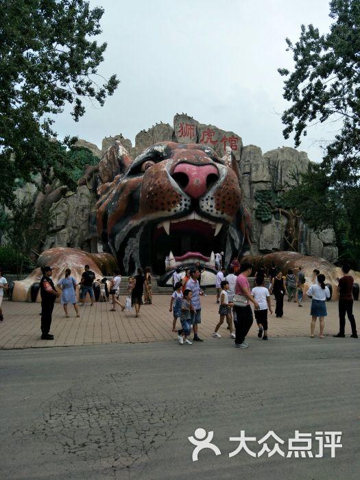 天津动物园狮虎馆图片 - 第53张