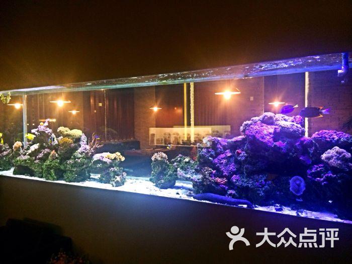 idea(埃迪娅)意大利餐厅酒吧鱼缸图片 - 第44张