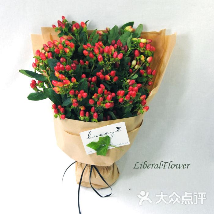 自由主义的花朵-红豆图片-郑州生活服务-大众点评网