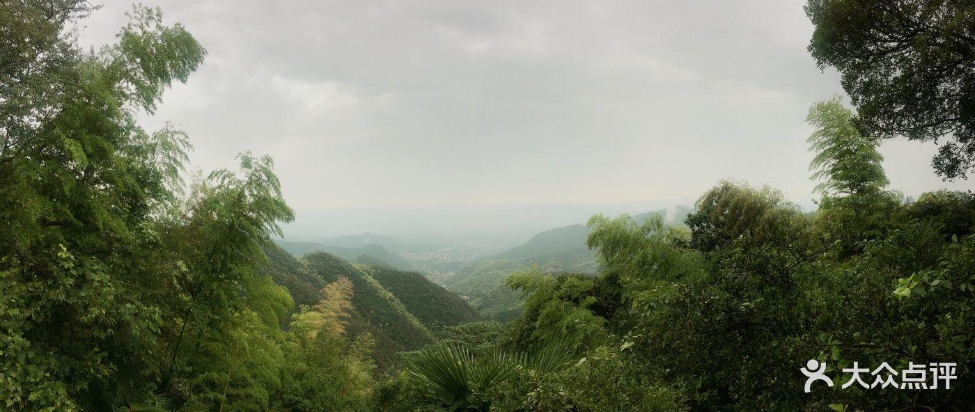 莫干山风景区图片 - 第4张
