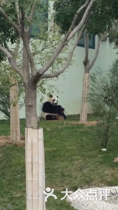 青岛动物园-图片-青岛景点-大众点评网
