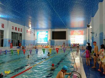 智勇 室内恒温游泳馆