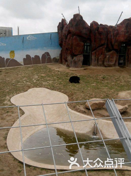 大丰港动物园-图片-大丰市景点-大众点评网
