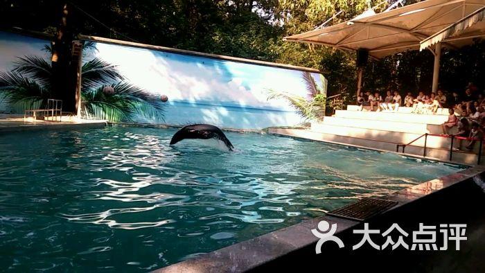 杭州动物园图片 - 第2263张