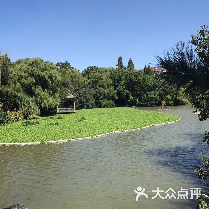 上海动物园图片 - 第128张