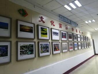 河南省图书馆