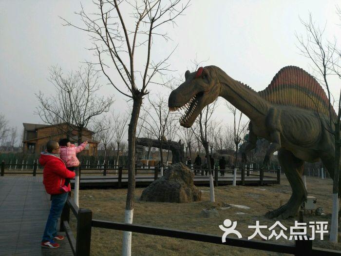 光合谷动物园图片 - 第1张