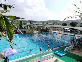 绿动游泳池