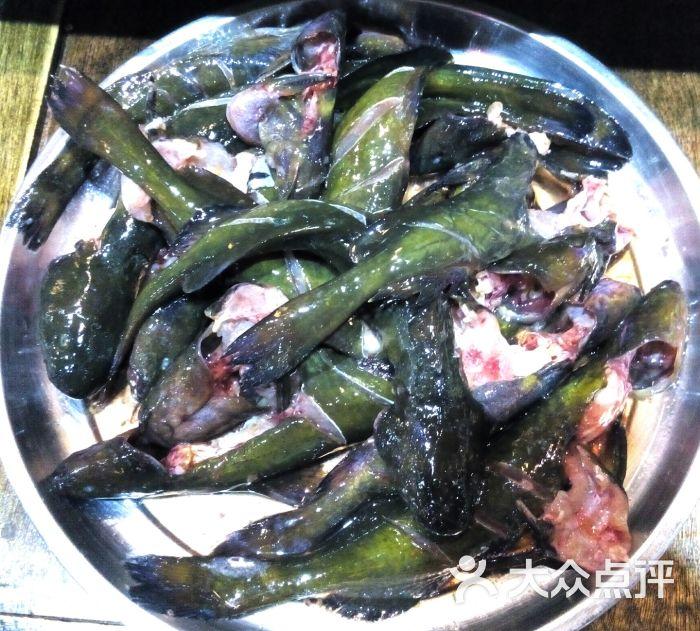 渔猫子木桶鱼(白果林店)-齐头黄图片-成都美食-大众
