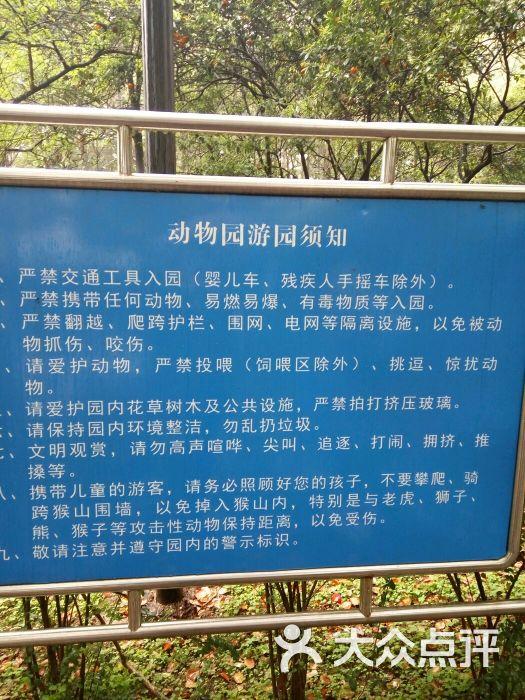 宜昌儿童公园动物园图片 - 第6张