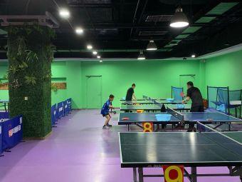 卓悦乒乓球俱乐部(空中花园店)