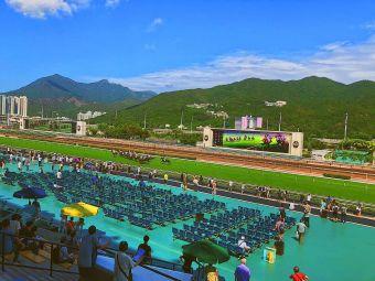 香港赛马会沙田马场董事厢房-D栋