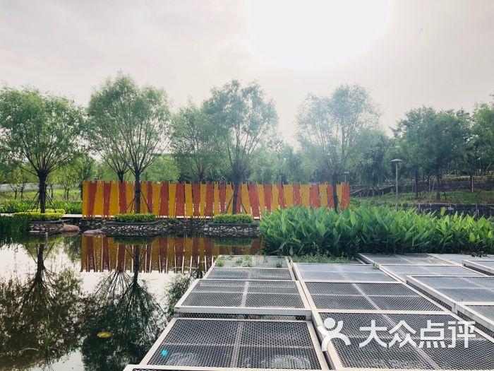 双鹤湖中央公园图片 - 第2张