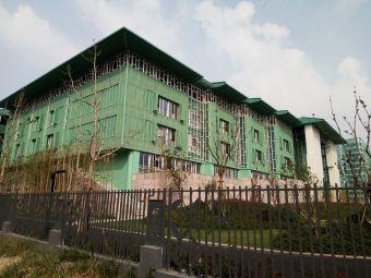 杭州观成实验学校