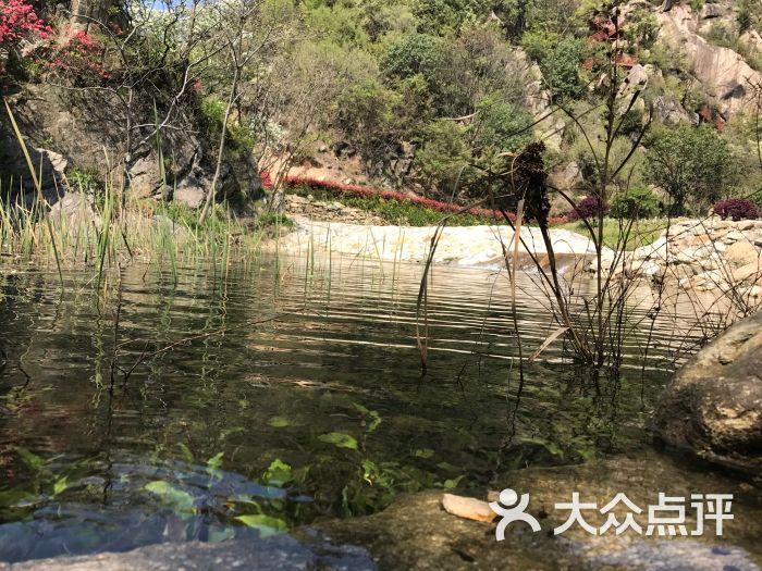 姚家山旅游风景区-图片-武汉周边游-大众点评网