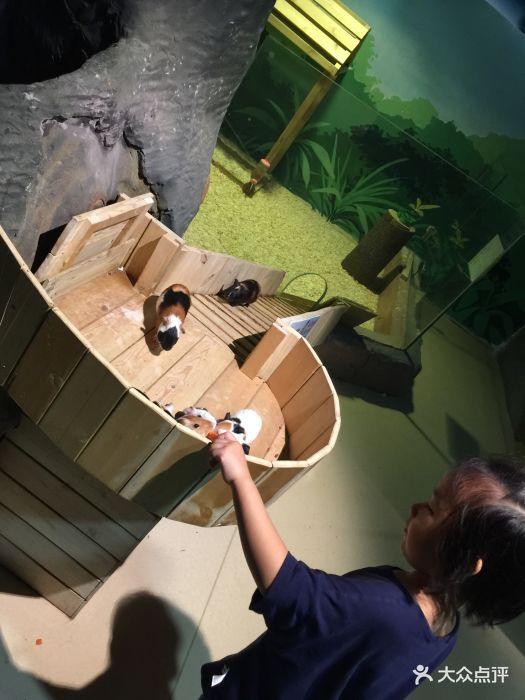 嗒咪动物奇幻乐园(杭州店)图片 - 第131张