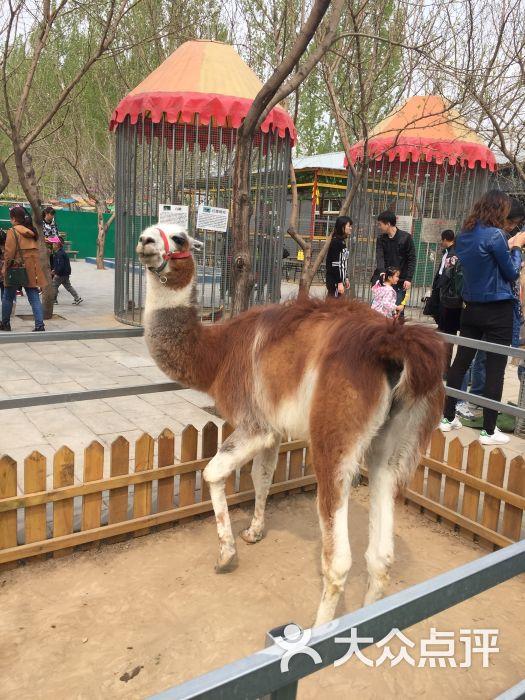 御禾动物园-图片-廊坊周边游-大众点评网