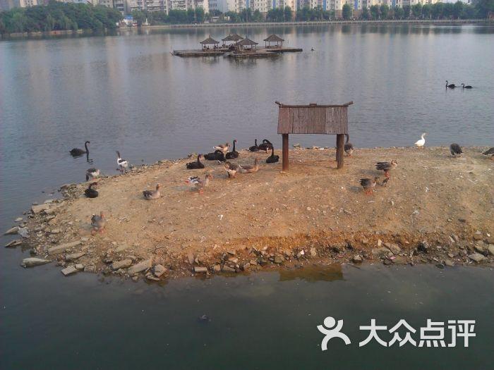 武汉动物园景点图片 - 第1343张