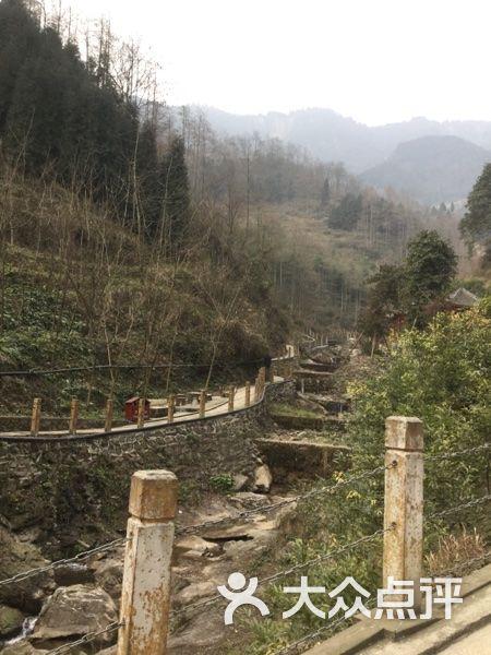 九龙山乡村旅游景区 pic图片 绵竹市周边游图片