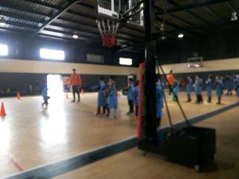 d2c篮球训练馆