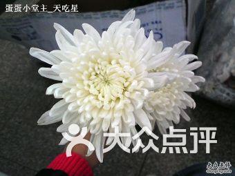 宝山殡仪馆