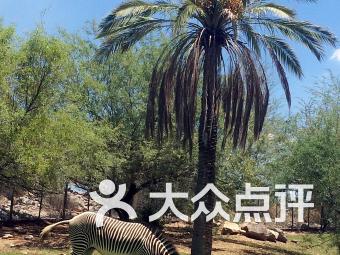 洛杉磯動物園和植物園