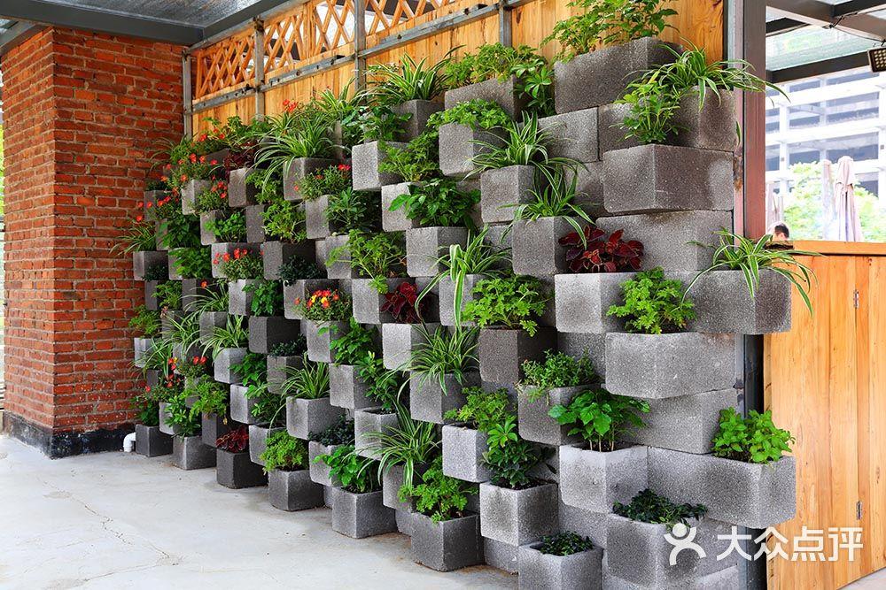 室内空间绿化 绿植租摆泥养我工业风室内空间绿化案例图片 - 第15张图片