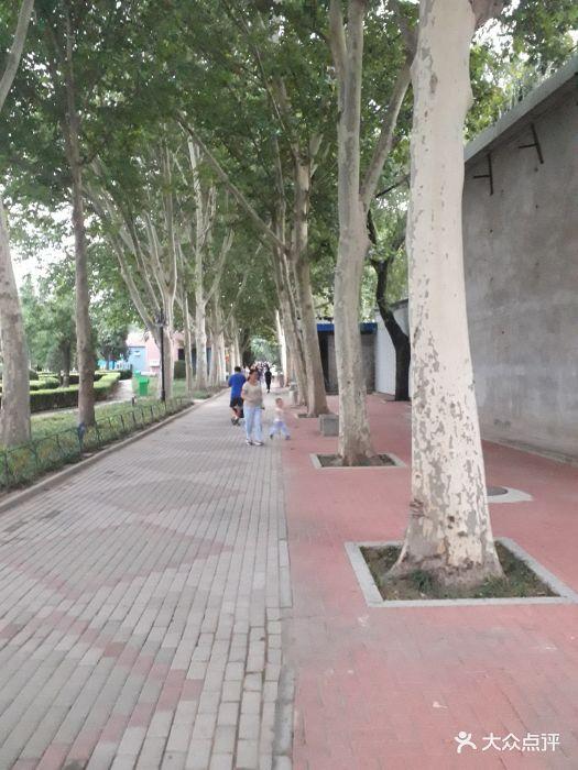 黄村儿童游乐园内部图片