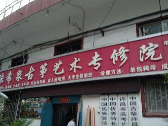 张希泉古筝艺术