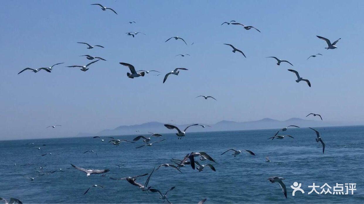 长岛渔家乐海上人家长岛渔家乐海上人家图片 - 第2张