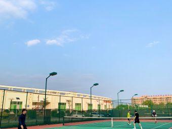廉江体育中心网球场
