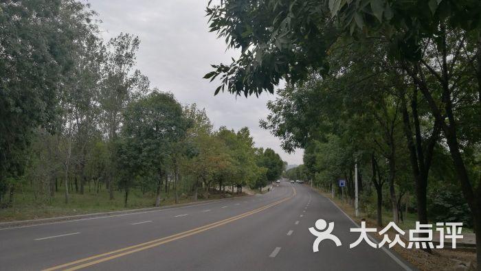 淄博鲁中驾考中心的点评