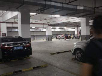 沙洲湖酒店停车场