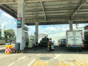 中石化瑞安山根加油站