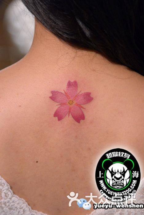 越狱刺青(中国纹身名店)-背部樱花纹身图片-上海丽人