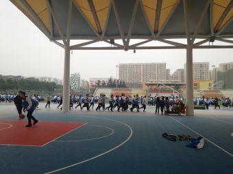 棠湖外国语学校